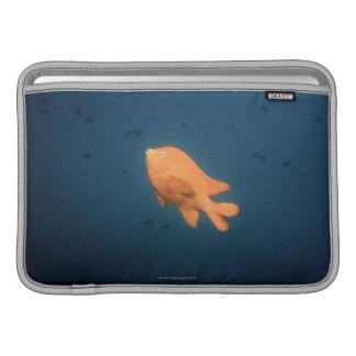 Girabaldi Funda MacBook