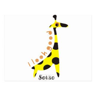 girafa postcard