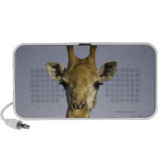 Giraffa Camelopardalis Laptop Altavoces