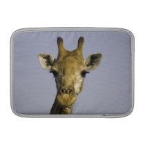 Giraffa Camelopardalis MacBook Sleeve