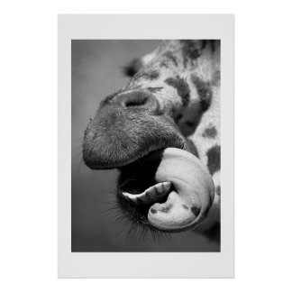 Giraffe#1 Poster
