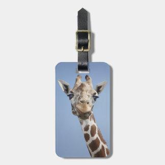 Giraffe 2 bag tag