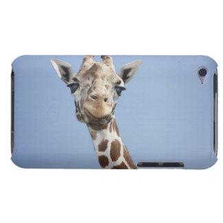Giraffe 2 iPod touch Case-Mate case