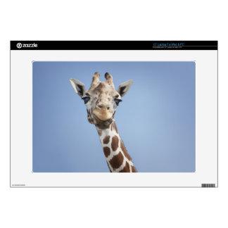 Giraffe 2 skins for laptops