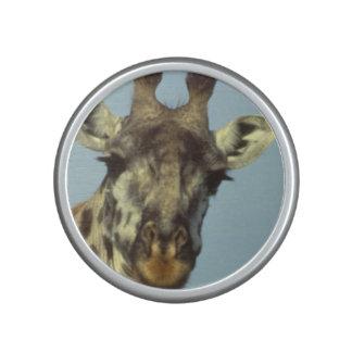 giraffe-34 speaker