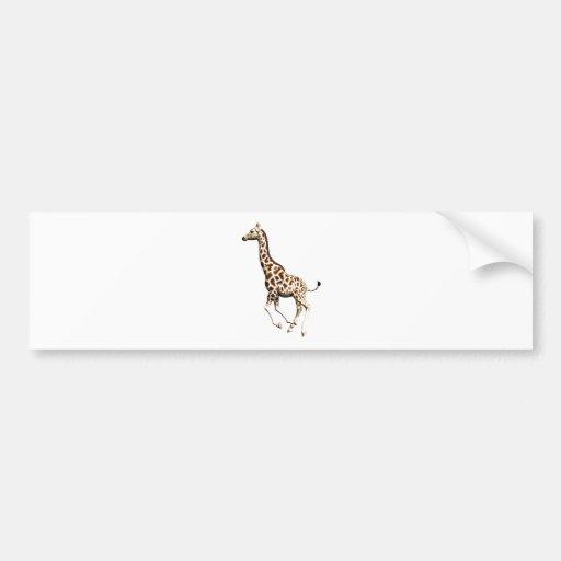 Giraffe 3 bumper stickers