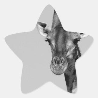 giraffe-40252 star sticker