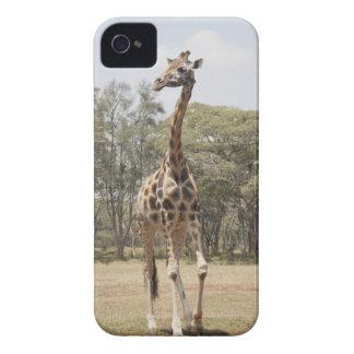 Giraffe 5 iPhone 4 case
