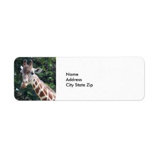 Giraffe 7032 label