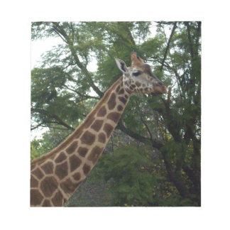 Giraffe_Adventure,_ Notepad