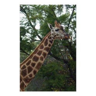 Giraffe_Adventure,_ Stationery
