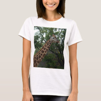 Giraffe_Adventure,_