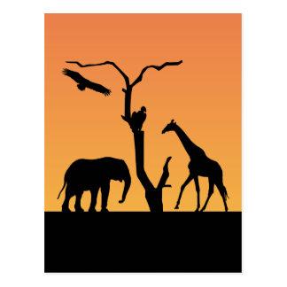 Giraffe african silhouette sunset postcard