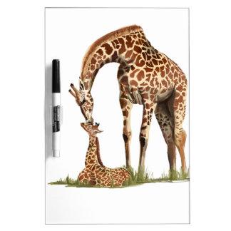 Giraffe and baby calf kissing Dry-Erase board