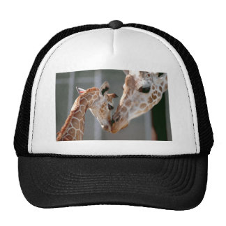 Giraffe and Baby hat