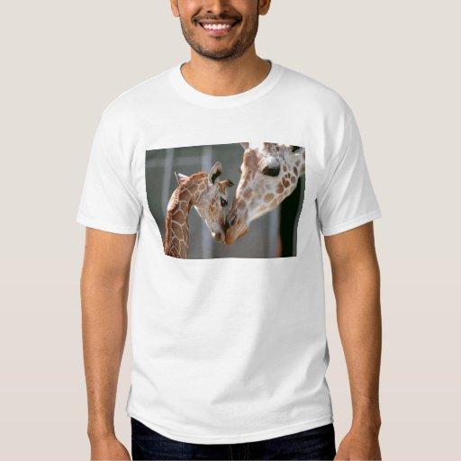 Giraffe and Baby shirt