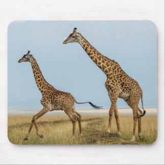 Giraffe and Young Running Mouse Pad