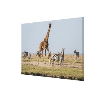 Giraffe and Zebras by a Waterhole Canvas Print