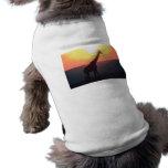 Giraffe at Sunset Pet T-shirt