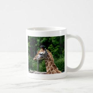 Giraffe Baby Calf Coffee Mug