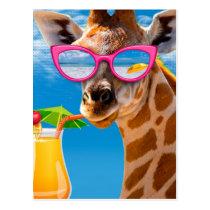 Giraffe beach - funny giraffe postcard