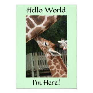 Giraffe Birth Announcements