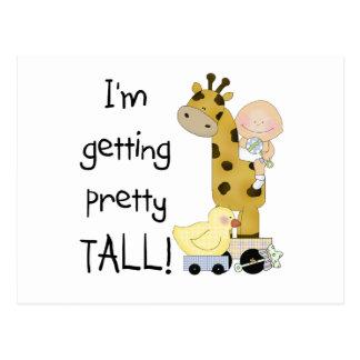 Giraffe - Boy Pretty Tall Tshirts and Gifts Postcard