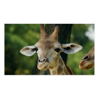 Giraffe Business Card Template