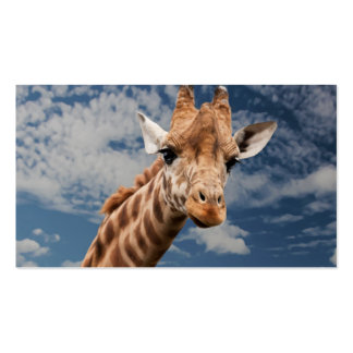 Giraffe Business Cards