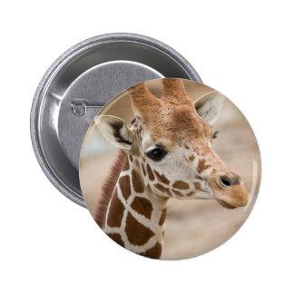 giraffe pinback button