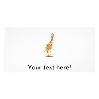 Giraffe cartoon photo cards