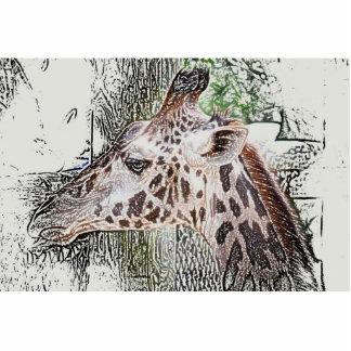 giraffe colored pencil style animal jungle sketch standing photo sculpture