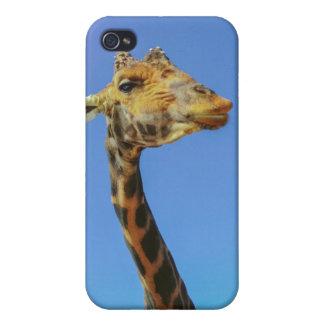 Giraffe Cover For iPhone 4