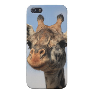 Giraffe Cover For iPhone SE/5/5s