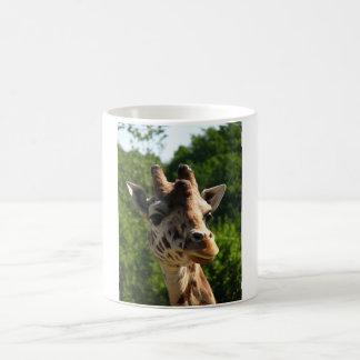 giraffe cup classic white coffee mug