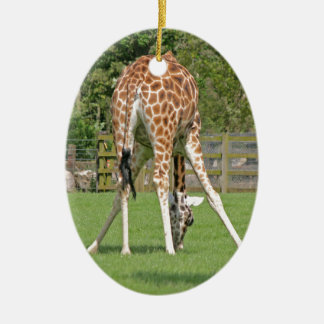 Giraffe Design Double-Sided Oval Ceramic Christmas Ornament