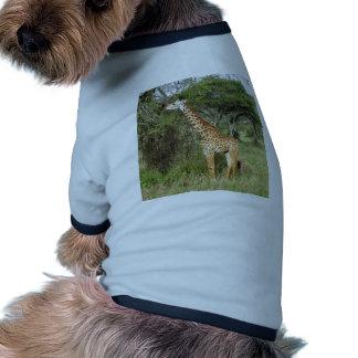giraffe pet t shirt