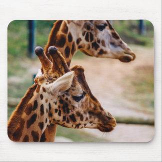 Giraffe Duo Portrait Mousepads