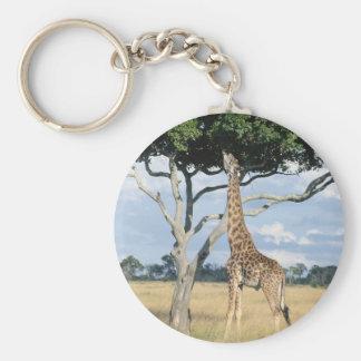 Giraffe Eating Basic Round Button Keychain