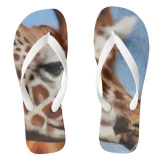 Giraffe eating its food flip flops