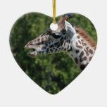Giraffe Eating Ornament