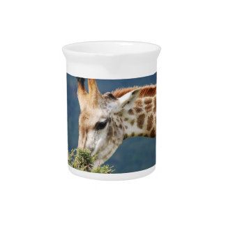 Giraffe eating some leaves beverage pitcher