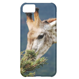 Giraffe eating some leaves iPhone 5C covers