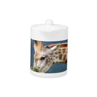Giraffe eating some leaves teapot