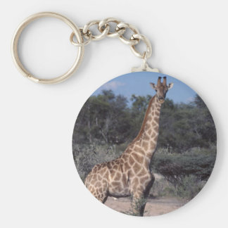 Giraffe - Etosha National Park, Namibia Key Chain