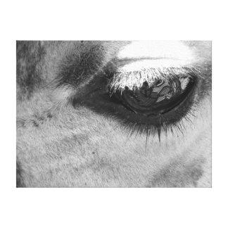 Giraffe Eye Stretched Canvas Print