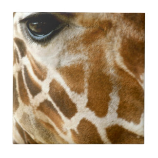 Giraffe Face Closeup | Wild Animals Nature Photo Ceramic Tile