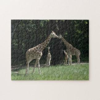 Giraffe Family Jigsaw Puzzle
