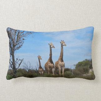 Giraffe Family On Grassy Hilltop Lumbar Pillow
