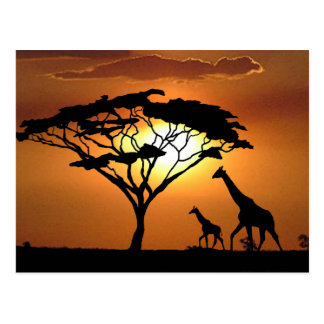 giraffe family post card